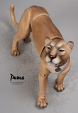 Iplehouse anime Pet doll black Panther tan puma
